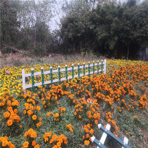 新乡花园木栅栏庭院插地木栅栏竹篱笆竹子护栏