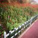 福建周宁防腐木栅栏木质围栏竹篱笆竹子护栏