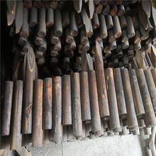 商丘戶外庭院護欄碳化木圍欄竹籬笆竹子護欄圖片