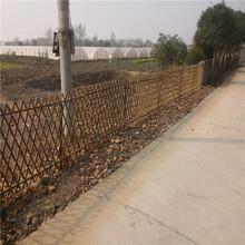 青島竹片柵欄木柵欄圍欄花園竹籬笆竹子護欄圖片