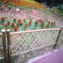 榆林仿竹圍欄花園圍欄護欄竹籬笆竹子護欄圖片