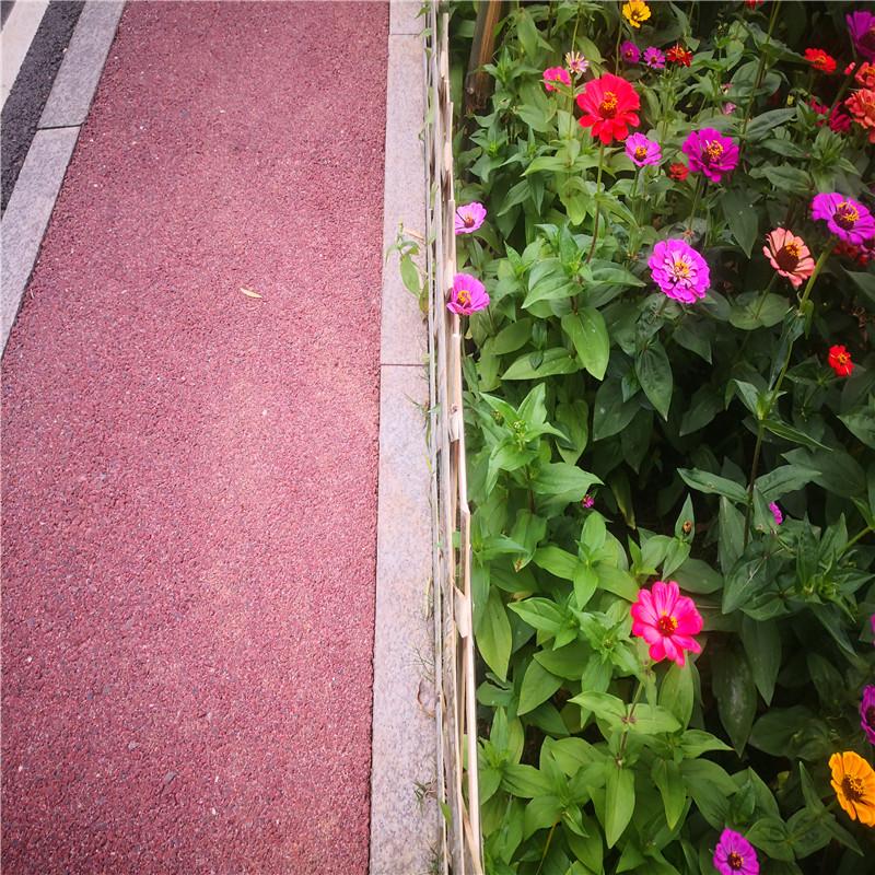 芜湖防腐竹子碳化防腐插地栅栏竹篱笆竹子护栏