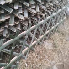 張掖防腐木籬笆實木柵欄竹籬笆竹子護欄圖片