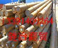 4027哪里卖圆钢现货、4027表示是什么钢、、四川省