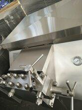 HL1000高壓均質機圖片