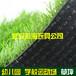 武漢仿真草坪人工草皮地毯批發銷售施工公司在哪里