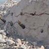 岩石静态液压劈裂棒