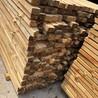 建筑木方價格太原方木批發