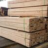 建筑木方價格天津建筑木方價格