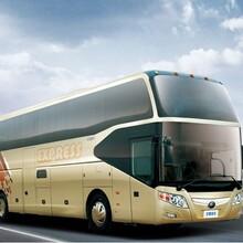 汽车票)昆明到巴中客车(哪里乘车)几点发车?+票价多少?图片