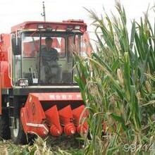 東南亞進口農機如何運作?清關報關圖片