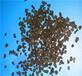 厦门木质活性炭生产就选开碧源