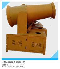噴霧機高遠射程噴霧機炮霧機圖片