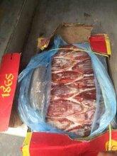 平顶山进口冷冻牛腱批发市场,冷冻牛腱价格图片