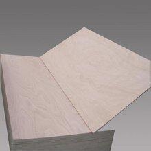 厂优游注册平台定制一次优游注册平台型杨木芯胶合板漂白面胶合板可贴面胶合板图片