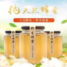 大山深處的野生蜂蜜,無添加,純天然,久違的味道,湖南省養蜂協會會長極力推薦!圖片
