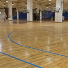 为什么篮球场馆运动木地板那么坚固耐用呢图片