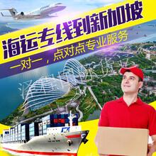 推荐:新加坡物流专线-湛江到新加坡货运代理%淘宝集运货运代理图片