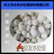 宁德纤维球/广元纤维球化工专用