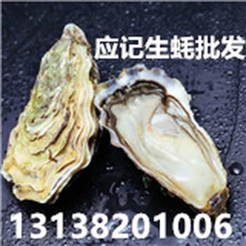 武汉生蚝批发多少钱一个-生蚝多少钱一斤