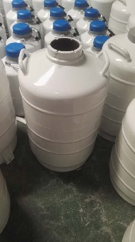 西安液氮罐10升價格