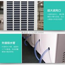 凤泉食品厂抽湿机现货图片