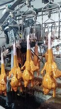 鸭鹅不锈钢浸蜡池家禽自动挂蜡池鸭鹅融蜡机冷蜡池厂家直销图片