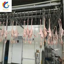 新疆鸡自动屠宰流水线厂家直销鸭子屠宰设备家禽屠宰流水线定制图片
