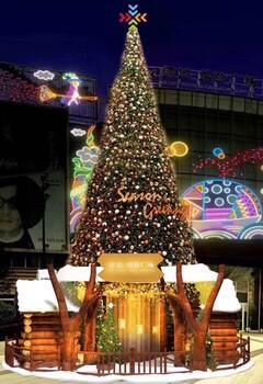 大型圣诞树
