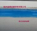 杭州益清聚酯食品传输带烘干输送无毒环保易清洁透气渗水性好