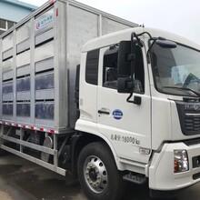 开县生猪运输车厂家价格图片
