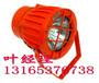 DGC70/127B(C)礦用隔爆型投光燈-浩博品質