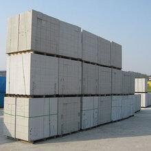 建材加气砖设备砂加气砖设备蒸养加气混凝土砌块设备图片