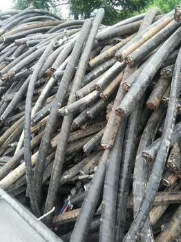 抵押电缆回收(当地抵押电缆回收价格表)高于同行价格