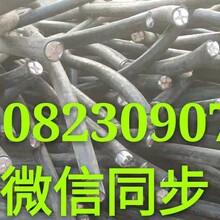二手成盘50铝线电缆回收J二手成盘50铝线电缆回收多少价钱图片