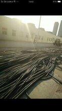 裸铝线多少钱一斤电话-大理联系电话图片