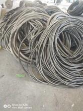 今日电缆回收价格联系方式图片