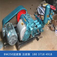 江西萍乡卧式泥浆泵水泥注浆机图片