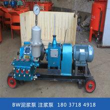 遼寧大連臥式泥漿泵水泥注漿機圖片