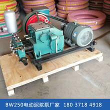 陕西安康卧式泥浆泵水泥注浆机图片