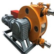 池州工业软管泵图片