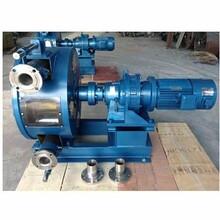 湖南湘潭全自动软管挤压泵图片
