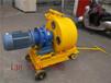 大連市雅安出口優質軟管泵