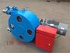 玉樹藏族自治州臨沂發泡水泥泵軟管泵
