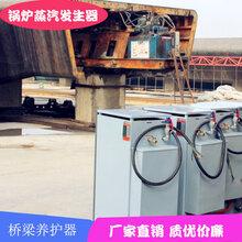 周口市天津桥梁养护器锅炉蒸汽发生器批发图片
