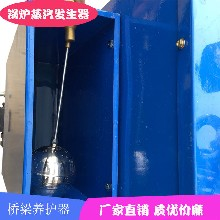 梅州市林芝地区桥梁养护器蒸汽锅炉哪家买图片