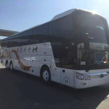 长途客运顺德到荆门长途卧铺客车顺德至荆门图片