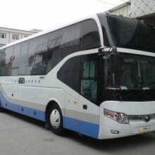 赣州有到仁寿的长途汽车客车大巴车/正规班车图片