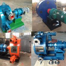 陜西安康RGB20-100蠕動軟管泵大廠家圖片