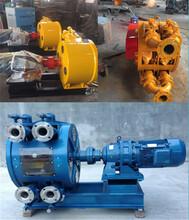 遼寧鞍山蠕動泵軟管泵工作原理發貨快圖片